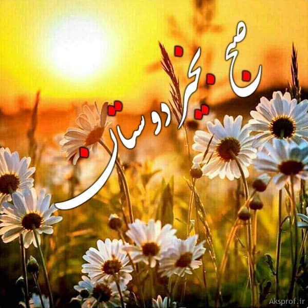 عکس نوشته صبح بخیر دوستان