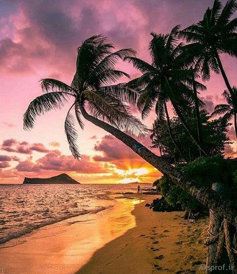 عکس غروب آفتاب غمگین ساحل دریا