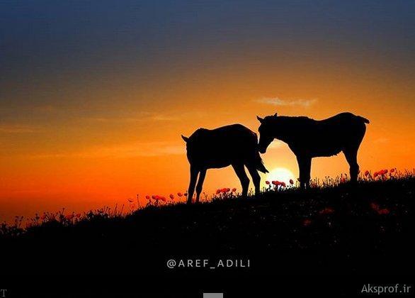 عکس نوشته غروب آفتاب غمگین