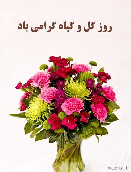 عکس نوشته روز گل و گیاه